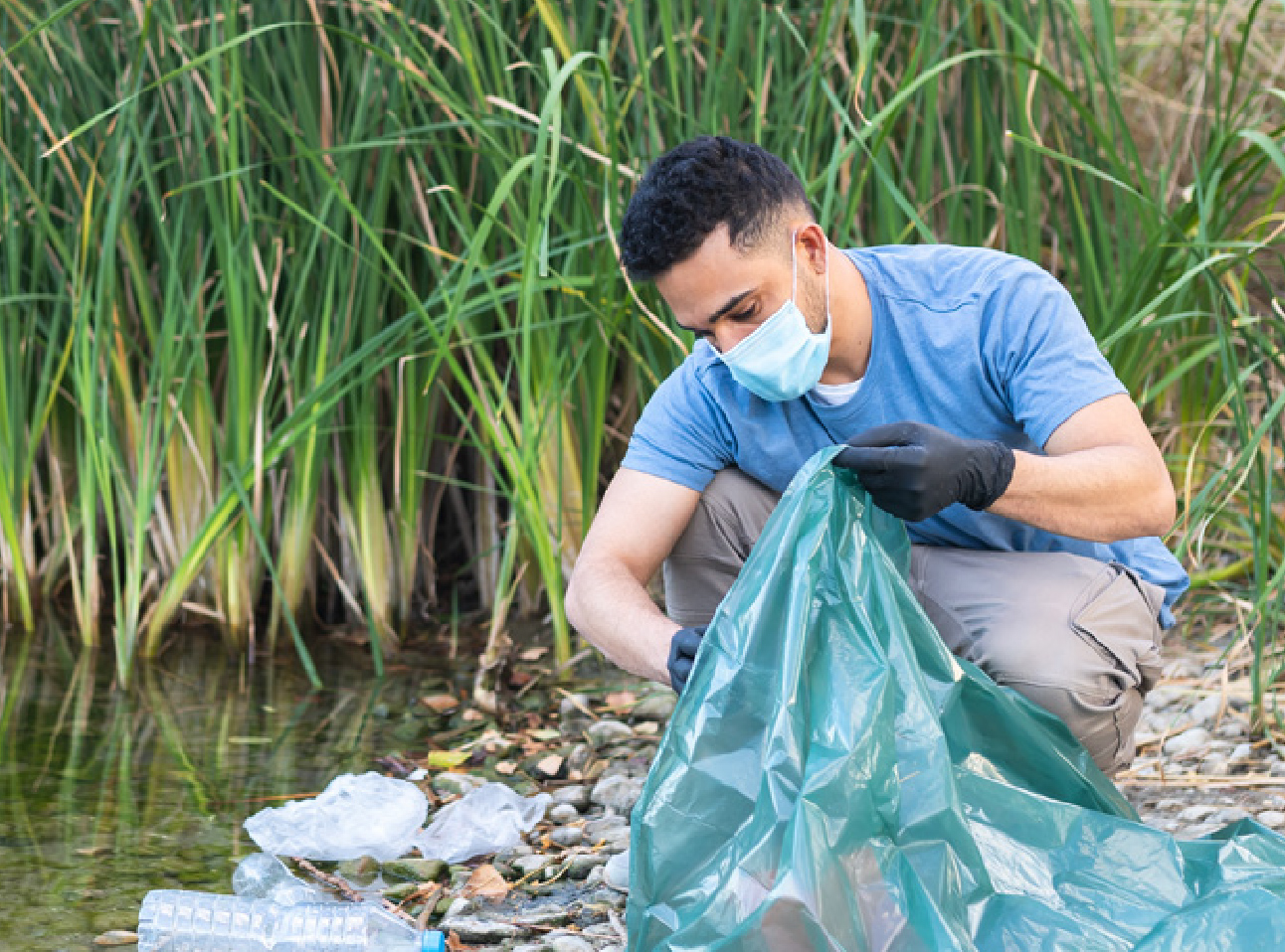 cleaning up the bay